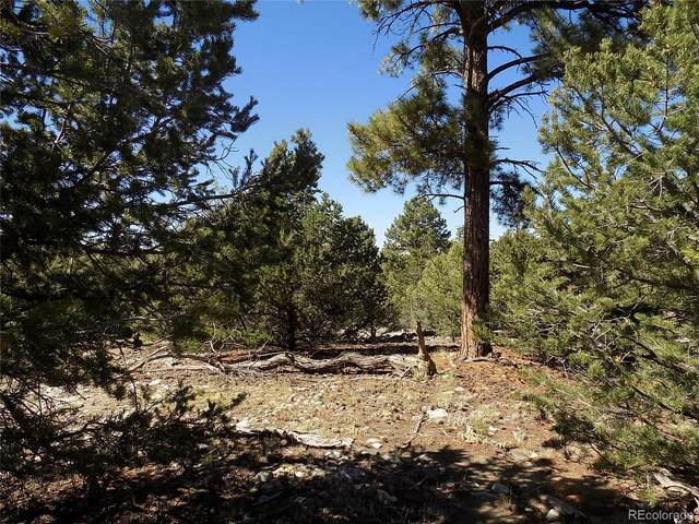 Mill Run Road, Mosca, CO 81146 (MLS #8728334) :: 8z Real Estate
