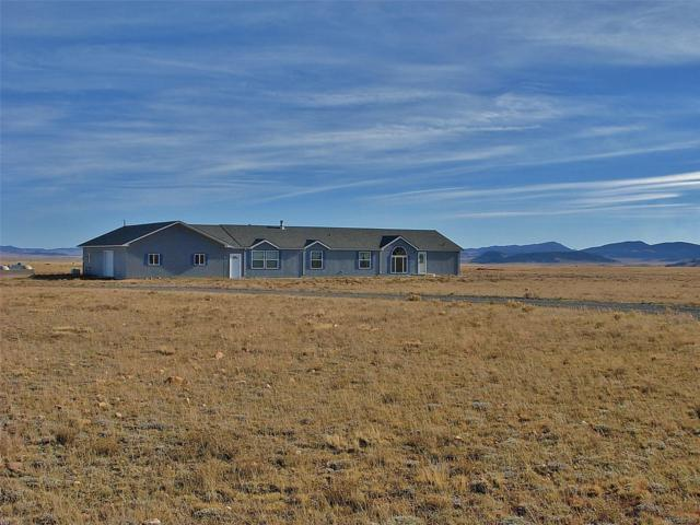3905 Bare Trail, Fairplay, CO 80440 (#8728468) :: Structure CO Group