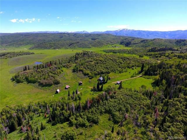 33545 County Road 41, Steamboat Springs, CO 80487 (#8743560) :: Real Estate Professionals
