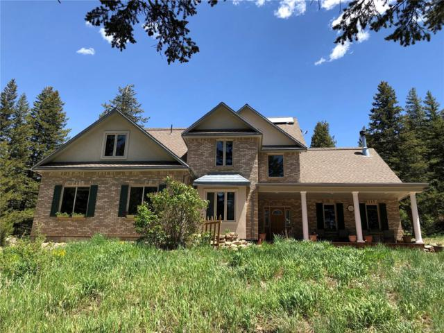 4 Silver Lakes Drive, Dumont, CO 80436 (#8894041) :: The Galo Garrido Group