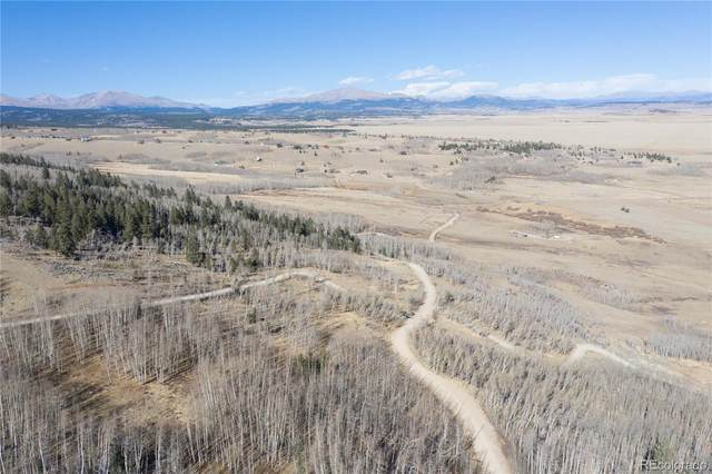 585 Breakneck Pass Court, Fairplay, CO 80440 (#8999849) :: The Brokerage Group