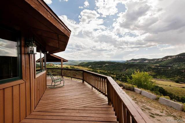 40405 Hill-N-Dale Road, Steamboat Springs, CO 80487 (#9016028) :: Bring Home Denver with Keller Williams Downtown Realty LLC