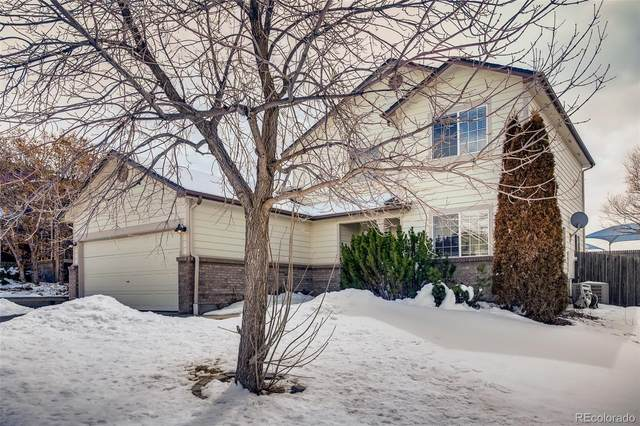860 Whispering Oak Drive, Castle Rock, CO 80104 (#9016286) :: The DeGrood Team