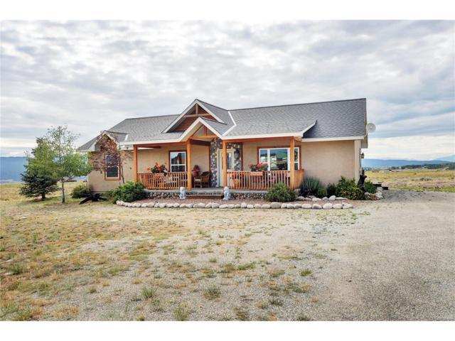 14606 County Road 276, Nathrop, CO 81236 (MLS #9042477) :: 8z Real Estate