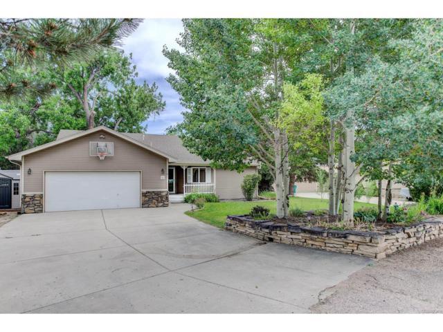 6 Namaqua Court, Loveland, CO 80537 (MLS #9064424) :: 8z Real Estate