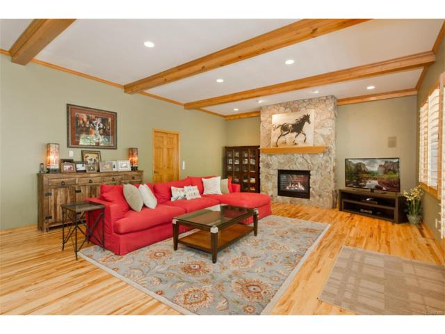 24999 N Mountain Park Drive, Evergreen, CO 80439 (MLS #9097306) :: 8z Real Estate