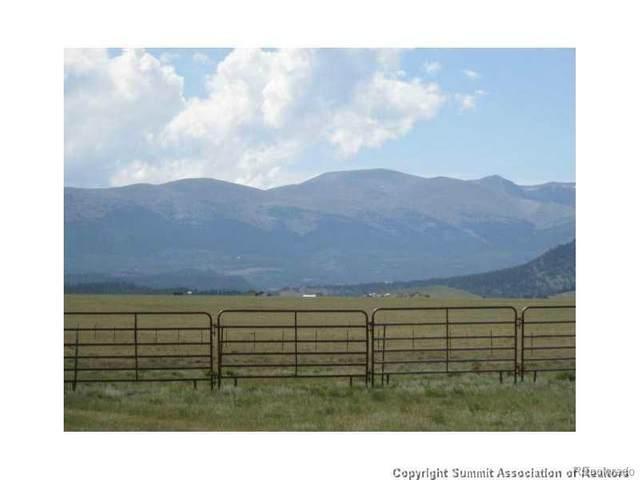 91 Salt Ranch Trail, Fairplay, CO 80440 (#9162519) :: The DeGrood Team
