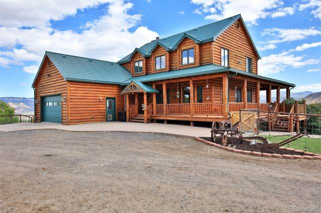 13612 59 Road, Collbran, CO 81624 (#9207798) :: Bring Home Denver with Keller Williams Downtown Realty LLC