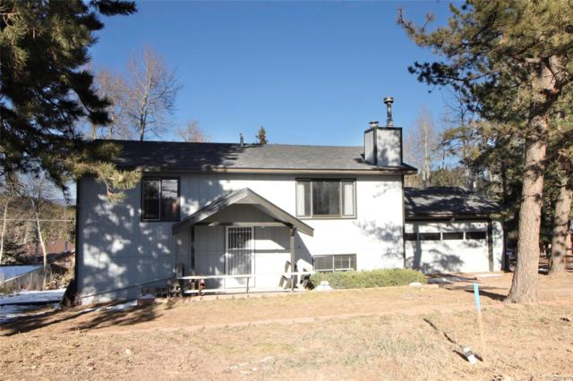 35 Illini Drive, Woodland Park, CO 80863 (#9217580) :: House Hunters Colorado