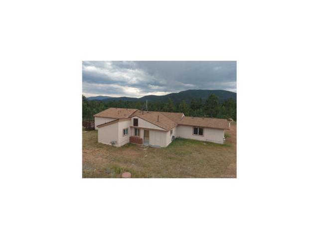 154 Silver Garter Road, Bailey, CO 80421 (MLS #9324896) :: 8z Real Estate