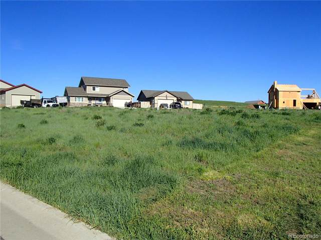 342 Little Bend Road, Hayden, CO 81639 (#9382560) :: Chateaux Realty Group