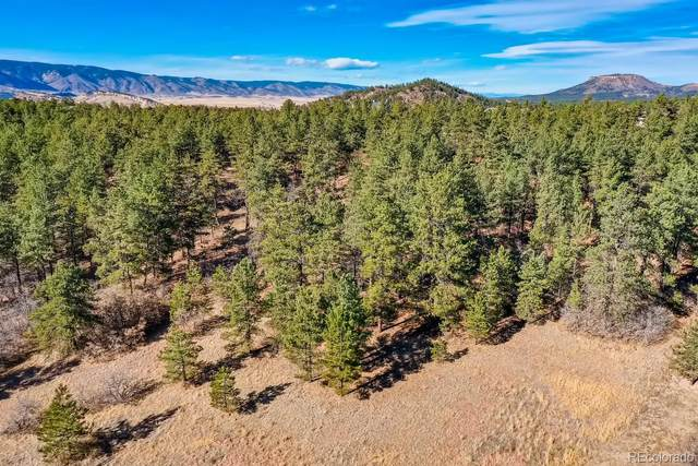 2251 Perry Park Avenue, Larkspur, CO 80118 (#9397684) :: The DeGrood Team