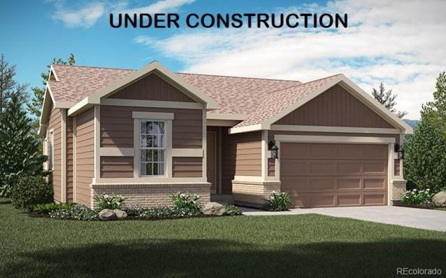 17564 Leisure Lake Drive, Monument, CO 80132 (#9430787) :: The DeGrood Team