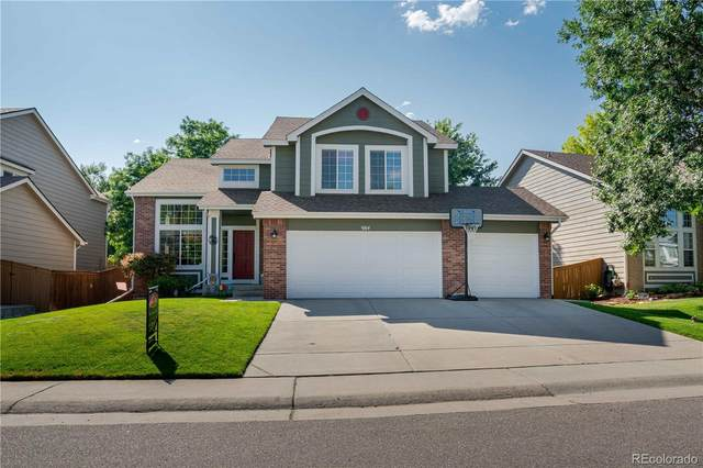 984 English Sparrow Trail, Highlands Ranch, CO 80129 (MLS #9482367) :: 8z Real Estate