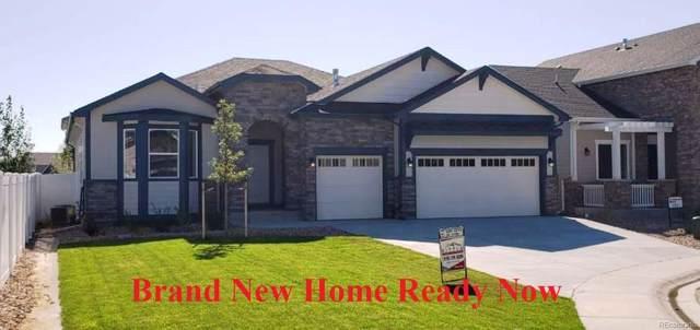 896 Shirttail Peak Court, Windsor, CO 80550 (MLS #9617191) :: 8z Real Estate