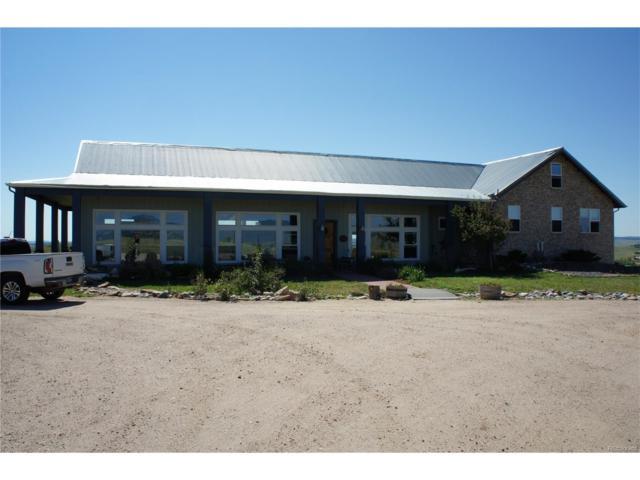 12449 Bestview Drive, Larkspur, CO 80118 (MLS #9633623) :: 8z Real Estate