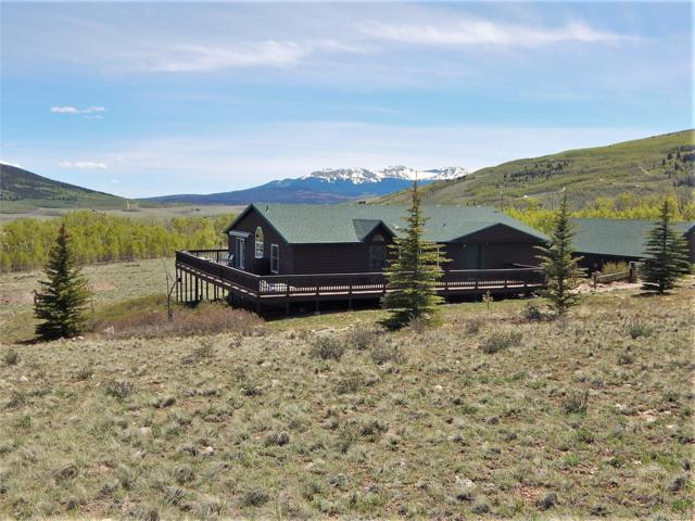 1353 Sheep Ridge Road, Fairplay, CO 80440 (#9711347) :: Bring Home Denver with Keller Williams Downtown Realty LLC
