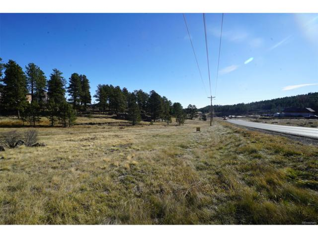 138 Cr 43 A, Bailey, CO 80421 (MLS #9772662) :: 8z Real Estate