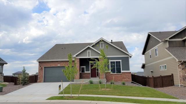 6122 Washakie Court, Timnath, CO 80547 (#9885343) :: Bring Home Denver with Keller Williams Downtown Realty LLC