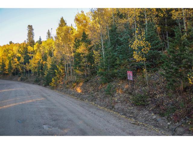 620 Rangeview Drive, Black Hawk, CO 80422 (MLS #9975525) :: 8z Real Estate