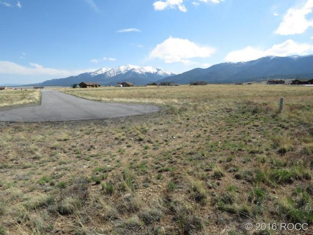 31351 Phil Court, Buena Vista, CO 81211 (#C235193) :: 5281 Exclusive Homes Realty