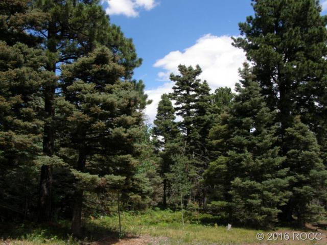 Lot 30A The Pines Village, Westcliffe, CO 81252 (#C235997) :: The Heyl Group at Keller Williams