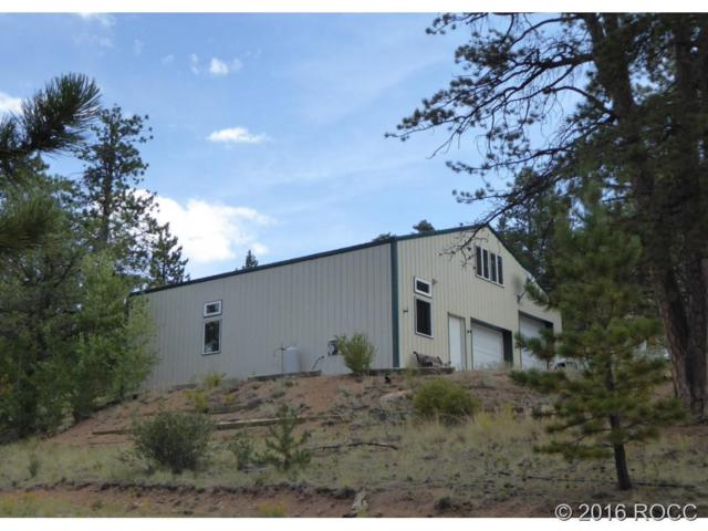593 Bassam Road, Hartsel, CO 80449 (#C236001) :: Hometrackr Denver