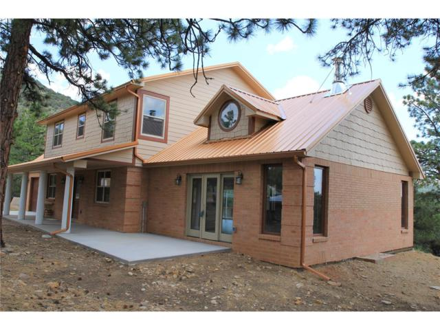 1625 Keepsake Loop, Westcliffe, CO 81252 (#C236046) :: The HomeSmiths Team - Keller Williams