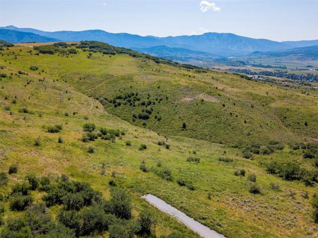 41955 Marabou Loop, Steamboat Springs, CO 80487 (MLS #S170220) :: 8z Real Estate
