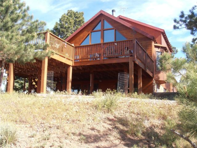 528 Choctaw Trail, Westcliffe, CO 81252 (#1088732) :: My Home Team