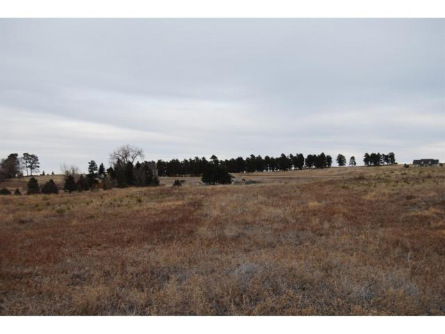 33729 Southern Cross Trail, Kiowa, CO 80117 (MLS #1148081) :: 8z Real Estate