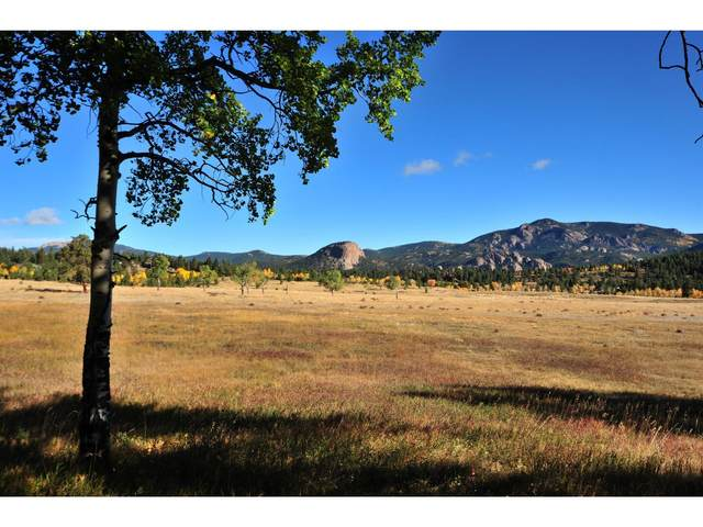 0 Lot 7 Lions Head Ranch, Pine, CO 80470 (#1205684) :: The Healey Group