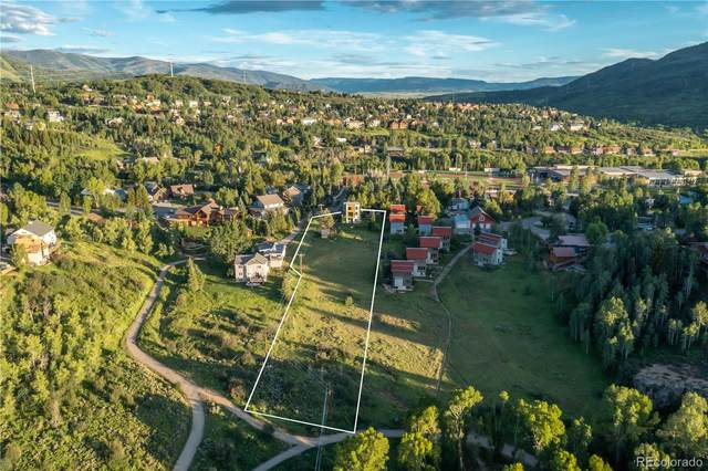 787 Mckinley Street, Steamboat Springs, CO 80487 (#1667994) :: The Colorado Foothills Team | Berkshire Hathaway Elevated Living Real Estate