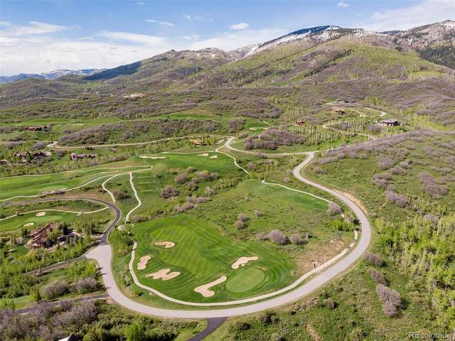33900 Canyon Court, Steamboat Springs, CO 80487 (#1767138) :: The DeGrood Team