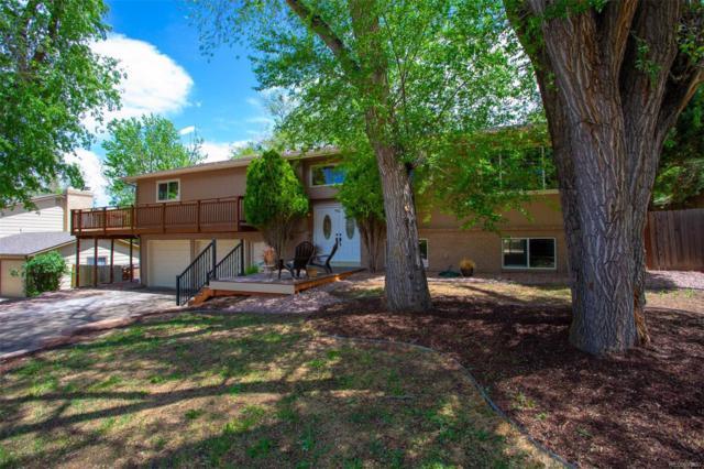 17 Newport Circle, Colorado Springs, CO 80906 (#1869447) :: Wisdom Real Estate