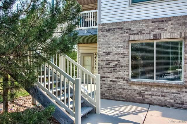 18086 Becket Drive, Parker, CO 80134 (#1892443) :: Sultan Newman Group