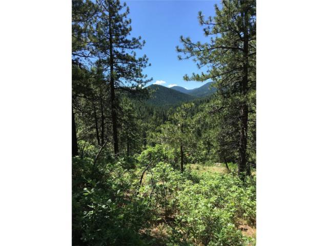17625 Bella Lane, Littleton, CO 80127 (MLS #2144955) :: 8z Real Estate