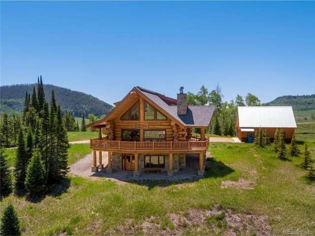59650 County Road 129, Clark, CO 80428 (#2218256) :: The DeGrood Team