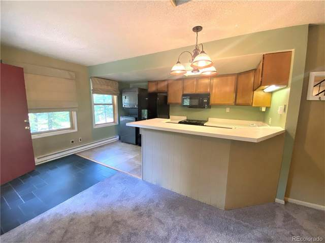 193 Range Road #1, Breckenridge, CO 80424 (#2391274) :: Chateaux Realty Group