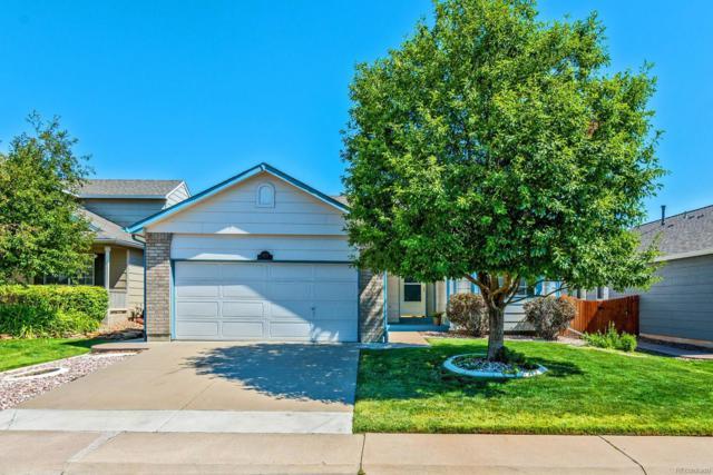 11237 W Progress Avenue, Littleton, CO 80127 (#2590236) :: The Peak Properties Group