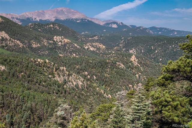 515 Old Mans Camp Trail, Manitou Springs, CO 80829 (MLS #2592261) :: Clare Day with Keller Williams Advantage Realty LLC