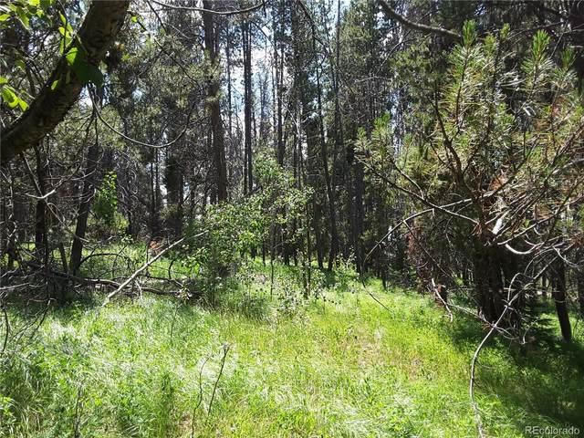 33548 Seneca Trail, Oak Creek, CO 80467 (#2716054) :: Real Estate Professionals