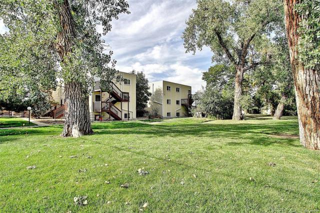 9240 W 49th Avenue #302, Wheat Ridge, CO 80033 (#2870111) :: Bring Home Denver