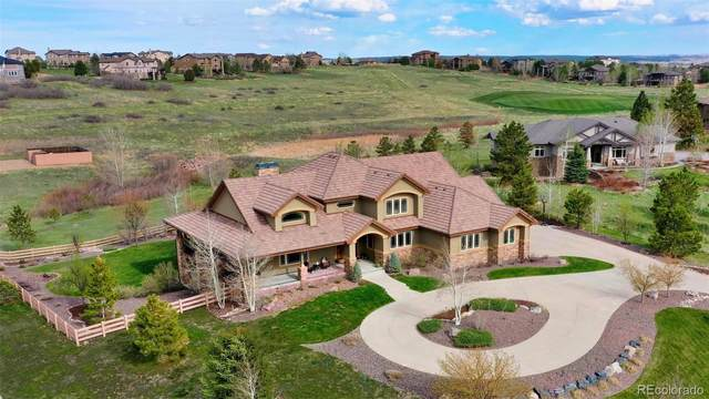 5124 Starry Sky Way, Parker, CO 80134 (#2932979) :: The Healey Group