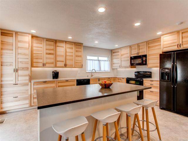 8483 S Painted Sky Street, Highlands Ranch, CO 80126 (#3117915) :: The HomeSmiths Team - Keller Williams