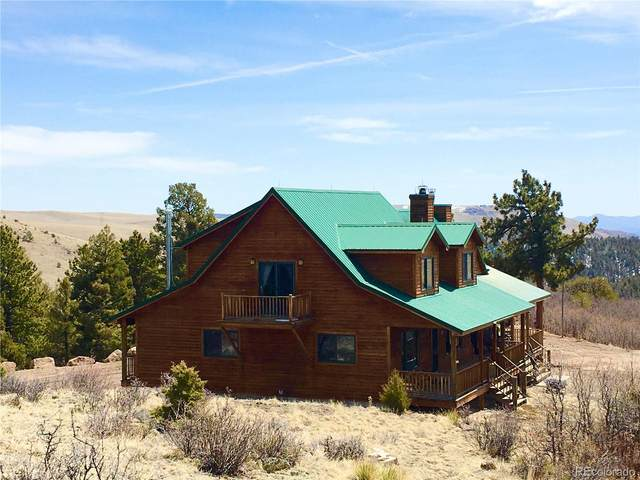 1251 S Antelope Trail, Cotopaxi, CO 81223 (#3448514) :: The DeGrood Team