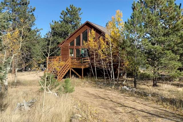 186 Saddlestring Road, Bailey, CO 80421 (#3503418) :: The DeGrood Team