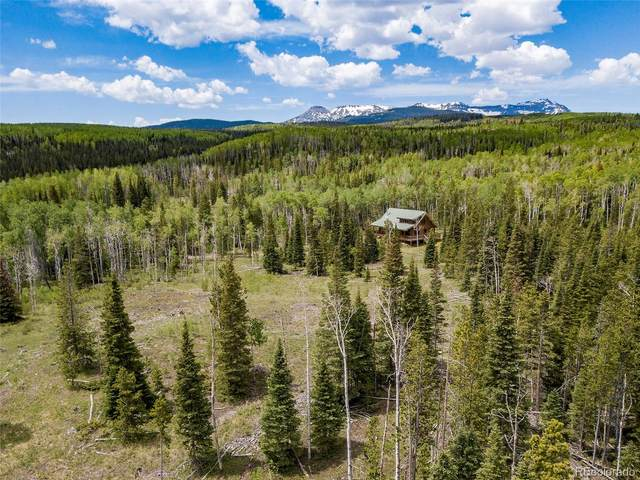 24505 County Road 3B, Yampa, CO 80483 (#3568361) :: The DeGrood Team