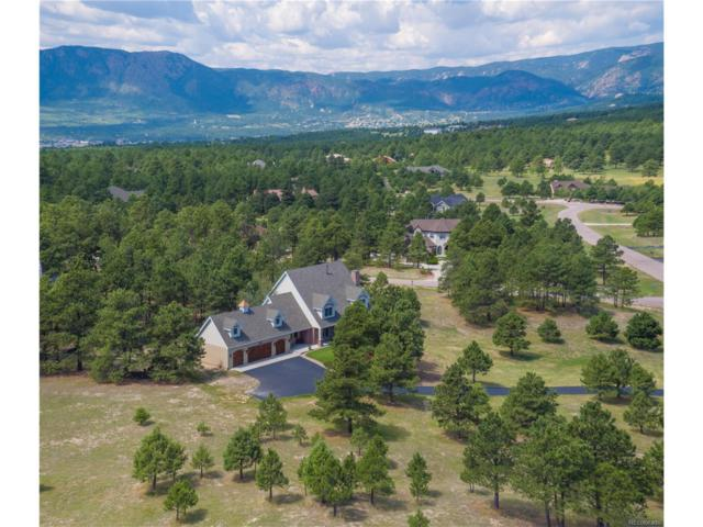 771 Long Timber Lane, Monument, CO 80132 (MLS #3583392) :: 8z Real Estate