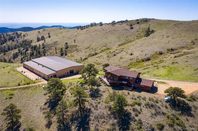 4528 Sheep Patch Road, Golden, CO 80403 (#3619433) :: Stephanie Fryncko   Keller Williams Integrity